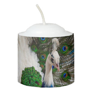 White Blue Peacock Votive Candle