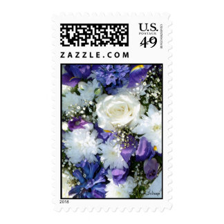 White & Blue   Postage Stamps