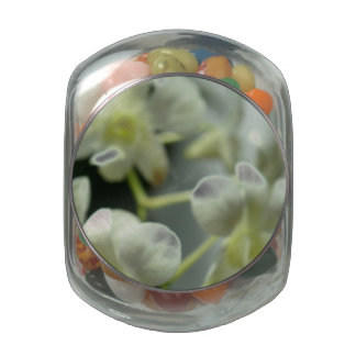White Blur Jelly Belly Candy Jar