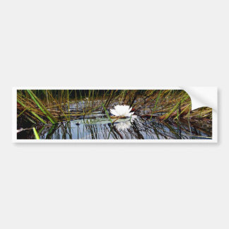 White Bog Lilly Pad Bumper Sticker
