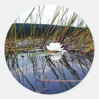 White Bog Lilly Pad Classic Round Sticker