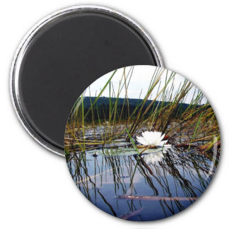 White Bog Lilly Pad 2 Inch Round Magnet