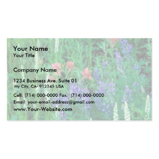 White bog orchid business card templates