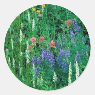 White bog orchid round stickers