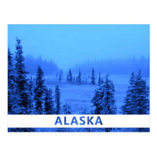 White Border for your Alaskan Vacation Photo Postcards
