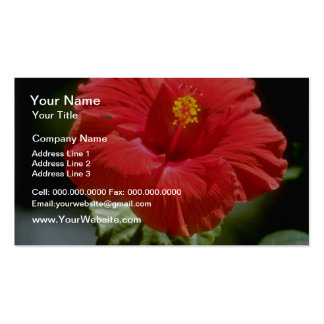 White Bougainvillea blossom Prospect Plantation Business Card