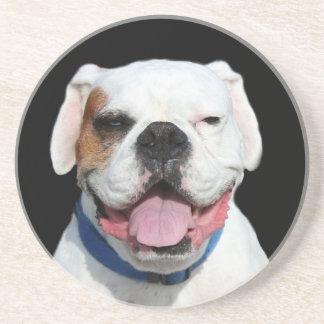 White Boxer Dog Coaster
