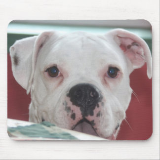 White Boxer Dog Photo Mouse Pad