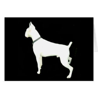 White boxer notecard