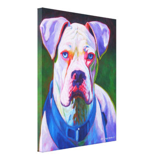 White Boxer on Wrapped Canvas Stretched Canvas Prints