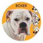 White Boxer Photo Classic Round Sticker