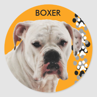 White Boxer Photo Classic Round Sticker