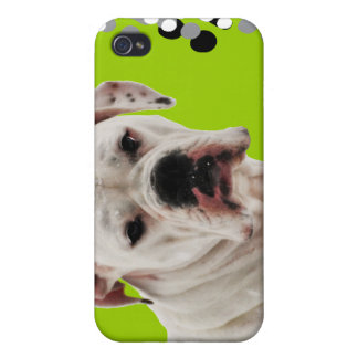 White Boxer Photo iPhone 4 Cases