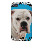 White Boxer Photo iPhone 4 Case