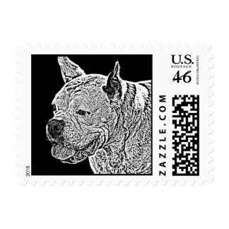 White boxer small postage stamps