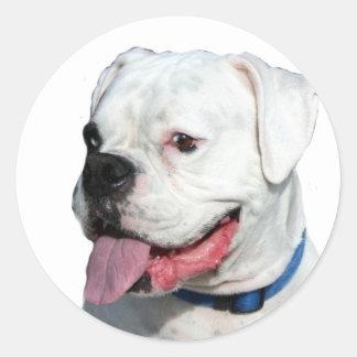 White Boxer stickers Round Sticker