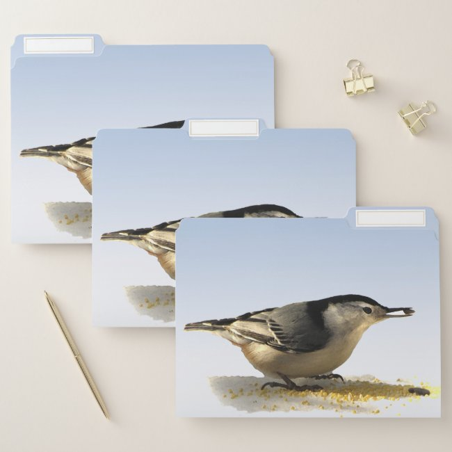 White-breasted Nuthatch Bird File Folder Set