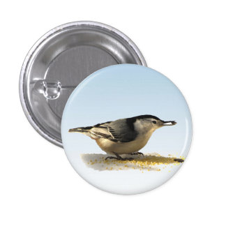White-breasted Nuthatch Buttons