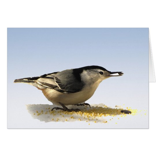 White-breasted Nuthatch Friendship Card