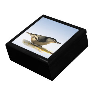 White-breasted Nuthatch Jewelry Box