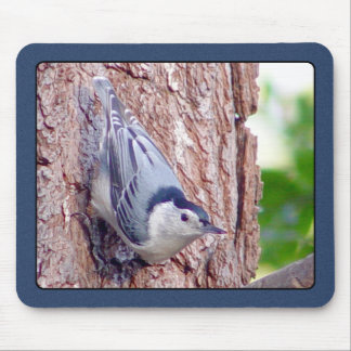 White Breasted Nuthatch Mousepad