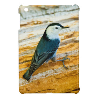 White-Breasted Nuthatch (Sitta Carolinensis) iPad Mini Cover