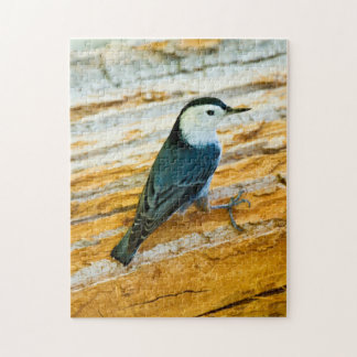 White-Breasted Nuthatch (Sitta Carolinensis) Jigsaw Puzzle