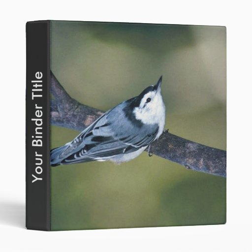 White-breasted nuthatch vinyl binder