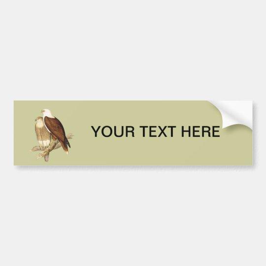 White Breasted Sea Eagle. Large Bird of Prey. Bumper Sticker