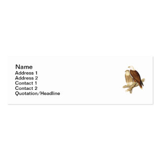 White Breasted Sea Eagle. Large Bird of Prey. Double-Sided Mini Business Cards (Pack Of 20)