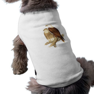 White Breasted Sea Eagle Large Bird of Prey Doggie T Shirt