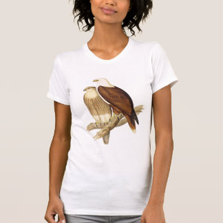 White Breasted Sea Eagle. Large Bird of Prey. T-Shirt