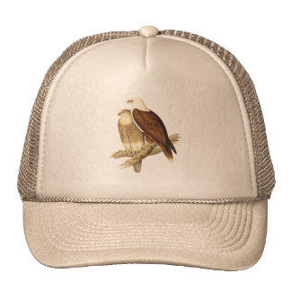 White Breasted Sea Eagle. Large Bird of Prey. Trucker Hat