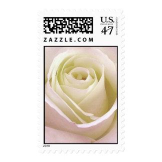 White bridal wedding rose postal stamp