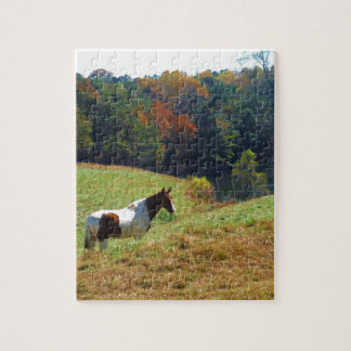 White Brown horse Autumn pond Puzzles