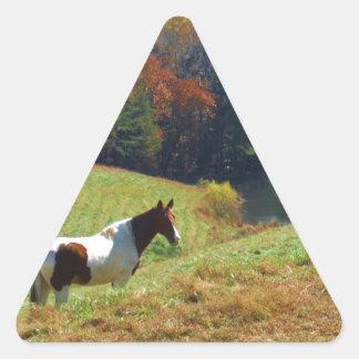 White & Brown horse, Autumn pond Triangle Sticker