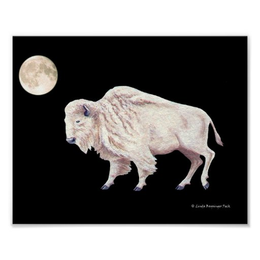 White Buffalo Cow Full Moon Poster