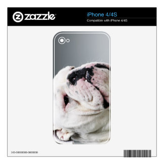 White Bull dog Decals For iPhone 4S