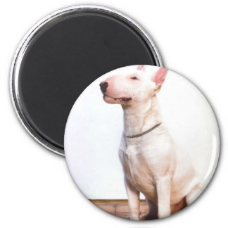 White Bully Refrigerator Magnets