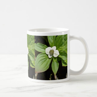 White Bunchberry Blossom flowers Coffee Mugs
