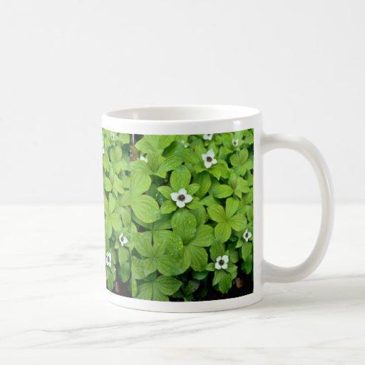 White Bunchberry flowers Classic White Coffee Mug