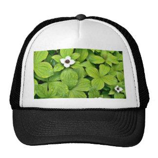 White Bunchberry Trucker Hats