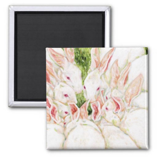 White Bunnies 2 Inch Square Magnet