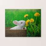 White Bunny With Dandelions Jigsaw Puzzle