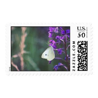 White Butterfly on Purple Wildflower Postage