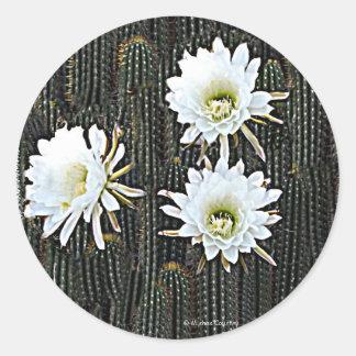 White Cactus Blooms Classic Round Sticker