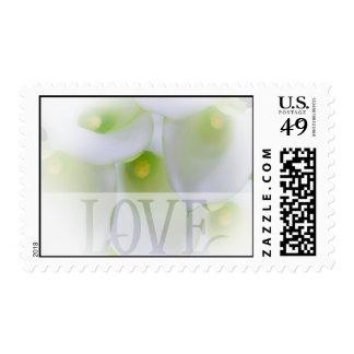 White Cala Lily  Love  Wedding Stamp
