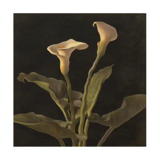 White Calla Lilies On A Black Background Wood Print