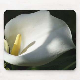 White Calla Lilies Over Black Background In Soft F Mouse Pad