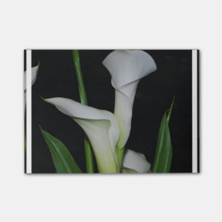 White Calla Lilies Post-it® Notes